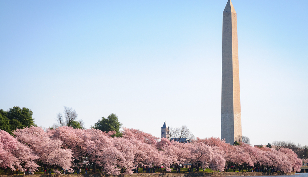Washington DC Camera Crews