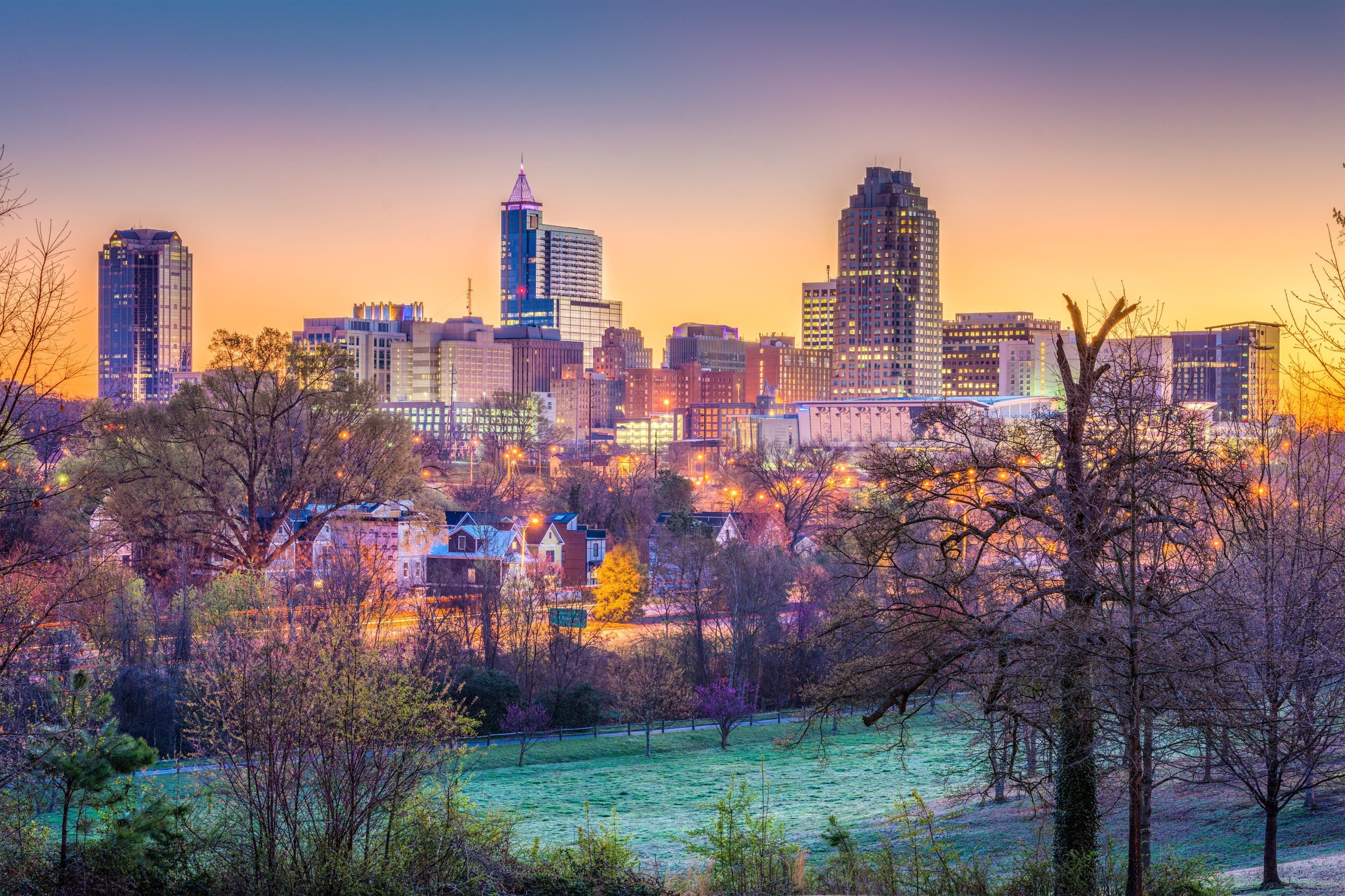 Raleigh, North Carolina skyline view with trees. Video Production