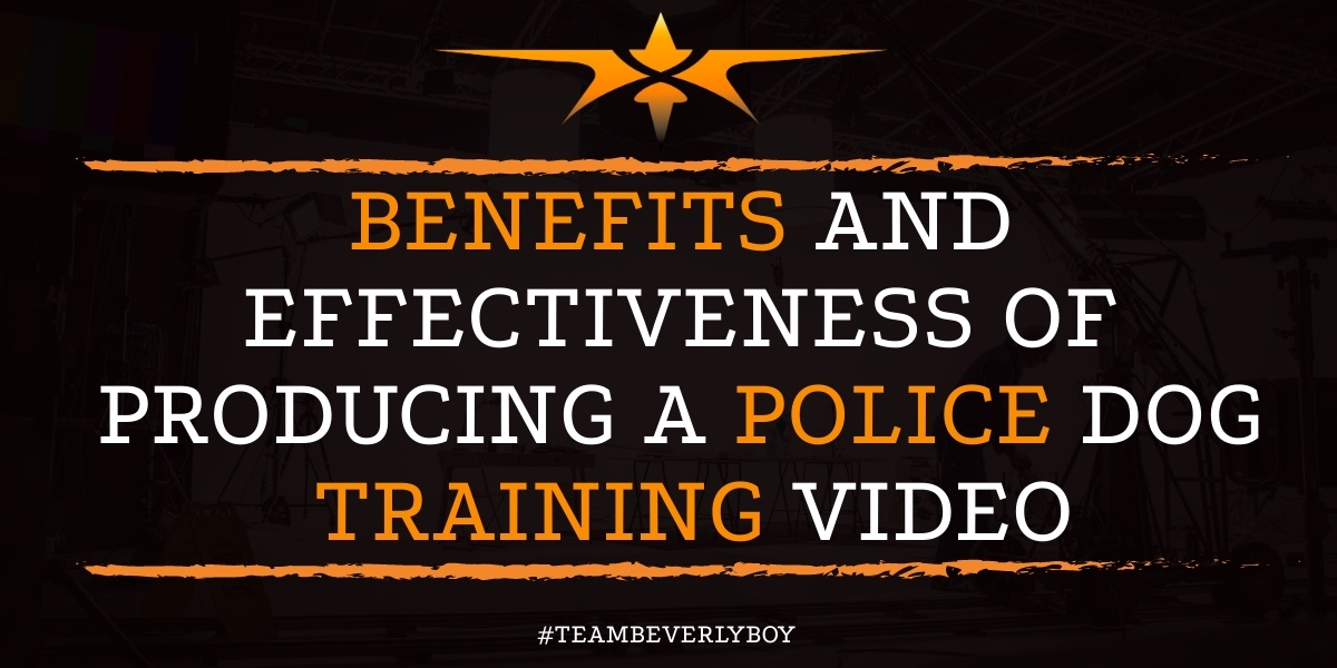 Benefits and Effectiveness of Producing a Police Dog Training Video